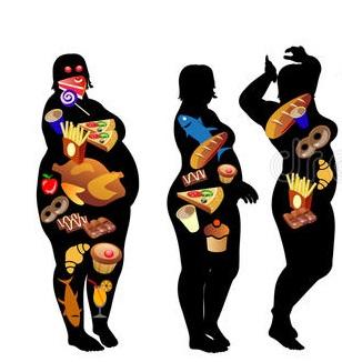 Fatmax Kullananlar- Ne işe Yarar?